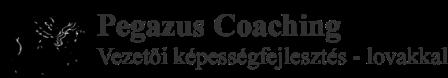 Pegazus Coaching Kft